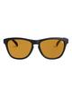 1 Boardriders Polarized Sunglasses  EEYEY00111 Quiksilver