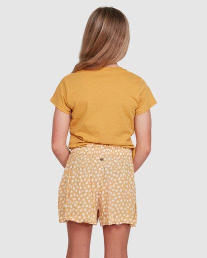 2 4Ever Sun Shorts Grey 5503346 Billabong