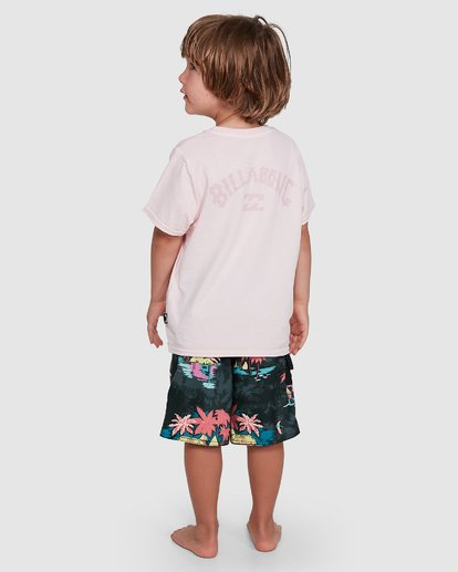 2 Groms Arch Overdye Short Sleeve Tee Pink 7503029 Billabong