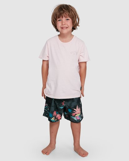 0 Groms Arch Overdye Short Sleeve Tee Pink 7503029 Billabong