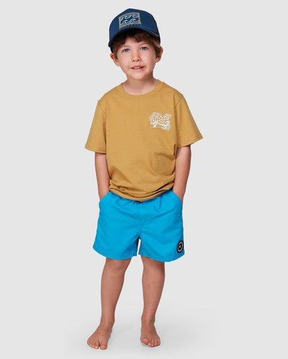 4 Groms Dinger Short Sleeve Tee Grey 7507003 Billabong