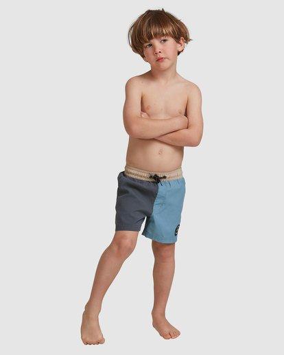 3 Boys 0-7  Interchange Layback Boardshorts Grey 7517435 Billabong