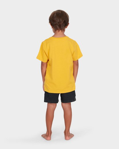 2 BOYS DUALITY TEE Yellow 7582002 Billabong