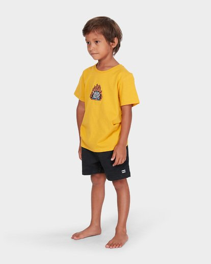 1 BOYS DUALITY TEE Yellow 7582002 Billabong