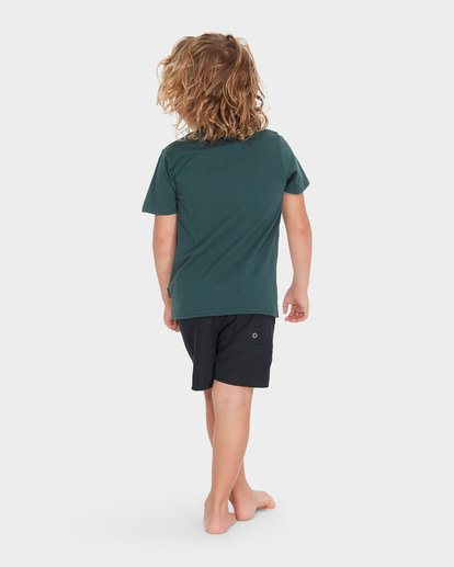 2 BOYS TERRACE TEE Green 7595002 Billabong