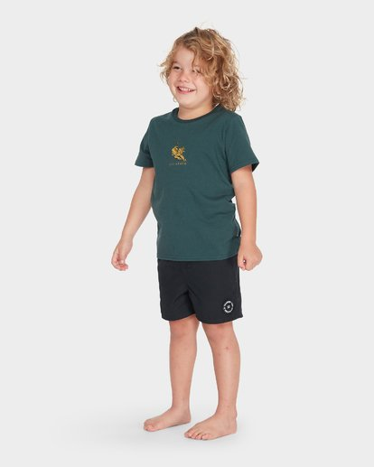 1 BOYS TERRACE TEE Green 7595002 Billabong