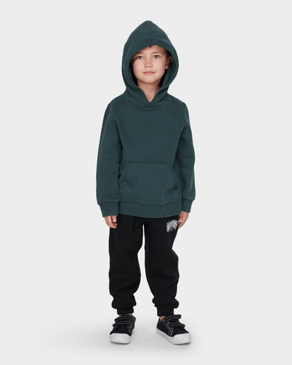 3 BOYS TERRACE HOOD Green 7595603 Billabong