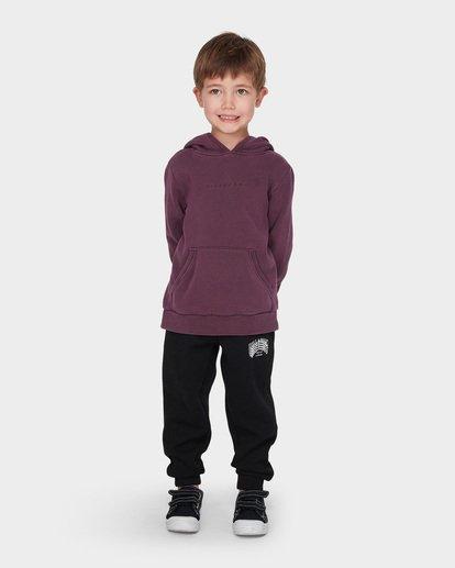 0 BOYS TERRACE HOOD Red 7595603 Billabong