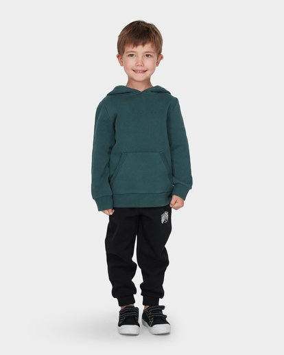 0 BOYS TERRACE HOOD Green 7595603 Billabong