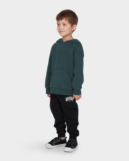 1 BOYS TERRACE HOOD Green 7595603 Billabong