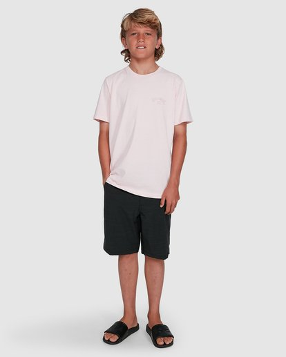 9 Boys Arch Overdye Short Sleeve Tee Pink 8503029 Billabong
