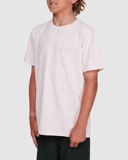 2 Boys Arch Overdye Short Sleeve Tee Pink 8503029 Billabong