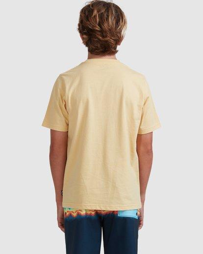 2 Boys 8-16 Puff Arch Short Sleeve Tee Yellow 8513016 Billabong