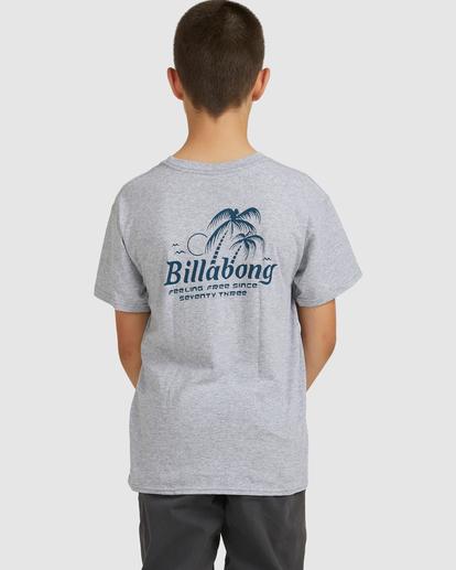 2 Boys 8-16 Foxtail Short Sleeve Tee Grey 8517021 Billabong