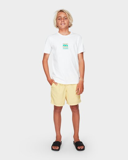 5 BOYS ALL DAY OVERDYE LAYBACK BOARDSHORTS Yellow 8572439 Billabong