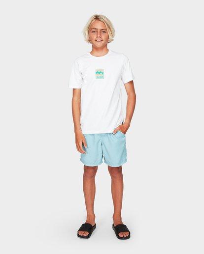 5 Boys All Day Overdye Layback Boardshorts Blue 8572439 Billabong