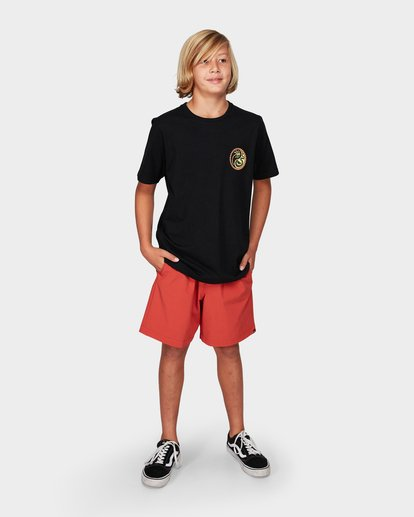 3 Boys Yang Tee Black 8592017 Billabong