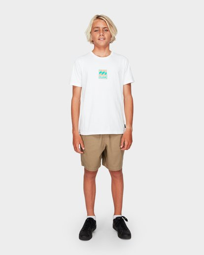 11 Boys Larry Twill Shorts Grey 8592733 Billabong