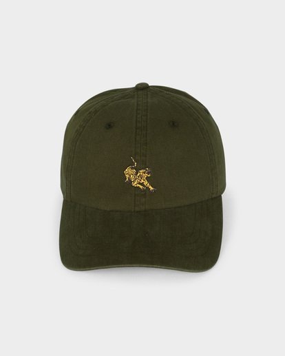 1 TEEN TERRACE LAD CAP Green 8695311 Billabong