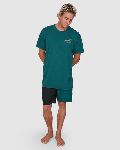 5 Dream Time Arch Short Sleeve Tee Green 9503051 Billabong