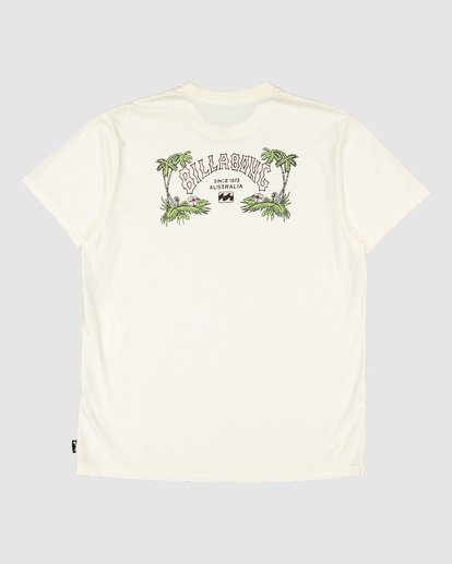 6 Arch Die Short Sleeve Tee White 9504005 Billabong