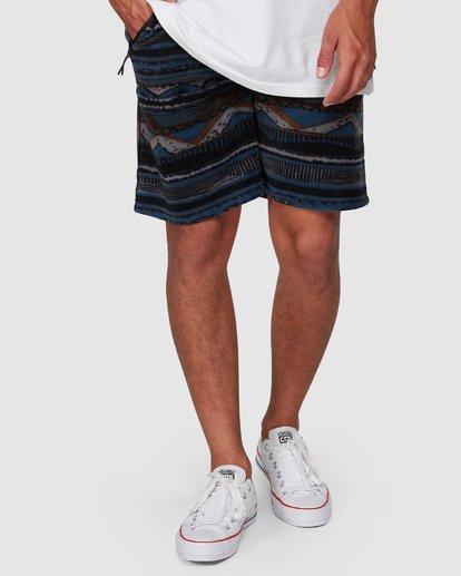 5 Raw Dog Furnace Shorts Blue 9507653 Billabong