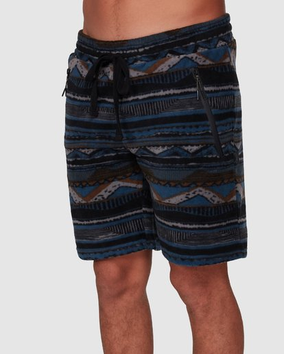 3 Raw Dog Furnace Shorts Blue 9507653 Billabong