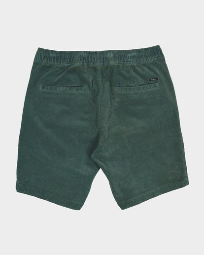 1 LARRY CORD ELASTIC Green 9571732 Billabong