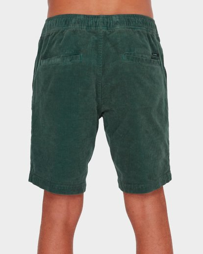 4 LARRY CORD ELASTIC Green 9571732 Billabong