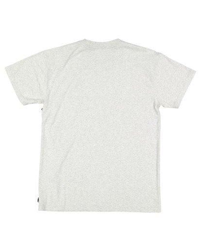 5 Premium Wave Wash Short Sleeve Tee Grey 9572051 Billabong