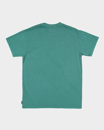5 PREMIUM WAVE WASH TEE Green 9572051 Billabong