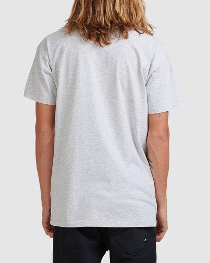 2 Premium Wave Wash Short Sleeve Tee Grey 9572051 Billabong