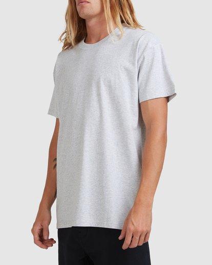 1 Premium Wave Wash Short Sleeve Tee Grey 9572051 Billabong