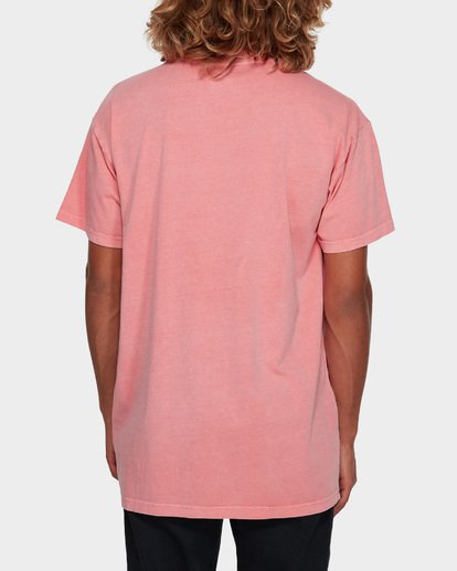 3 PREMIUM WAVE WASH TEE Pink 9572051 Billabong