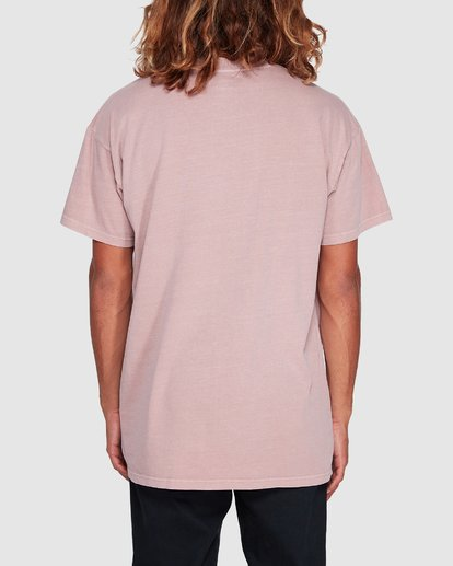 2 Premium Wave Wash Short Sleeve Tee Pink 9572051 Billabong