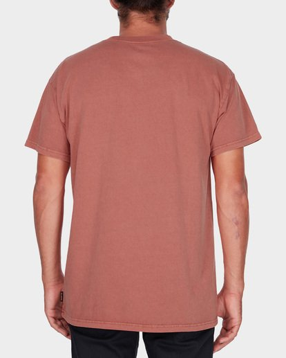 2 PREMIUM WAVE WASH TEE Brown 9572051 Billabong
