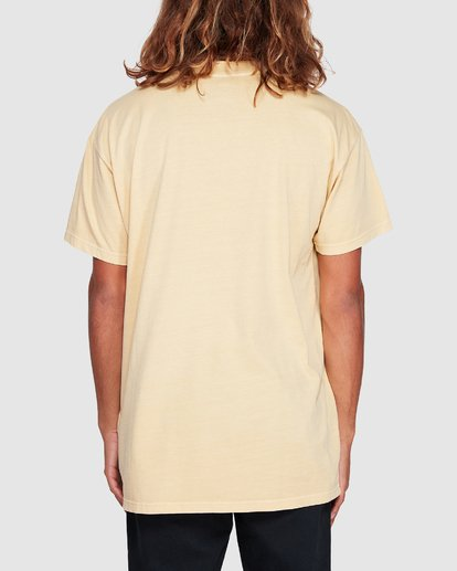 2 Premium Wave Wash Short Sleeve Tee Yellow 9572051 Billabong
