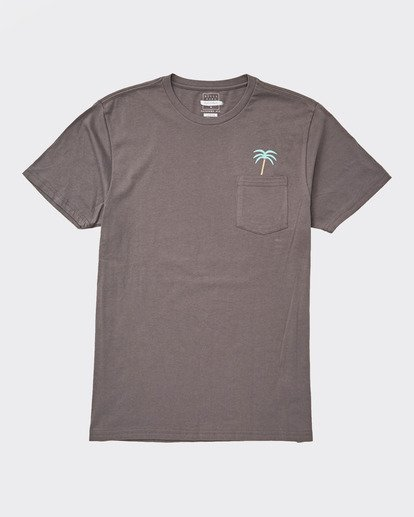 0 COMPANION TEE Grey 9596025 Billabong