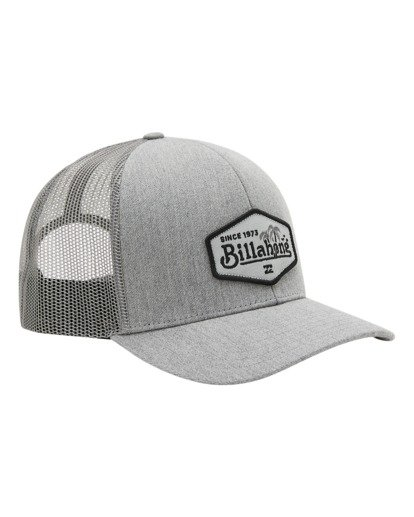 2 Boys' Walled Trucker Hat Grey ABBHA00116 Billabong
