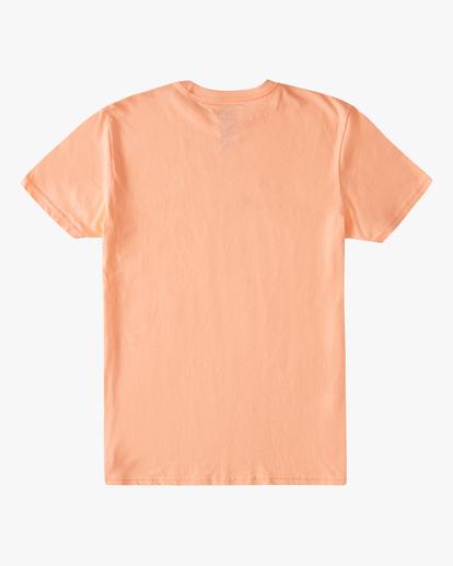 1 Boys' Entry Short Sleeve T-Shirt Black ABBZT00177 Billabong