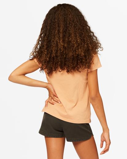 2 Stay Golden T-Shirt Brown ABGZT00183 Billabong