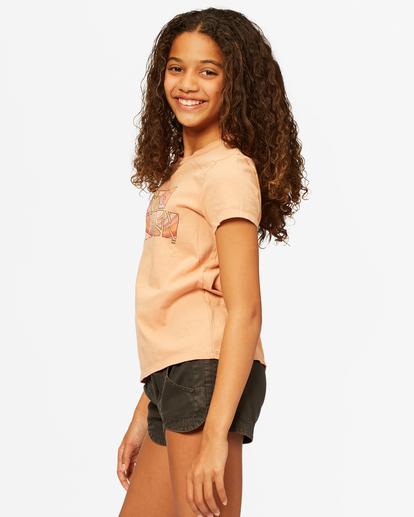 1 Stay Golden T-Shirt Brown ABGZT00183 Billabong
