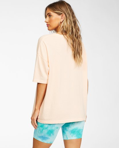 2 Local Favorite T-Shirt Grey ABJZT00241 Billabong