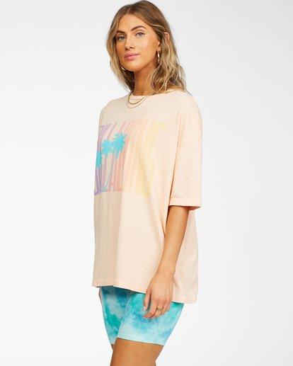 1 Local Favorite T-Shirt Grey ABJZT00241 Billabong