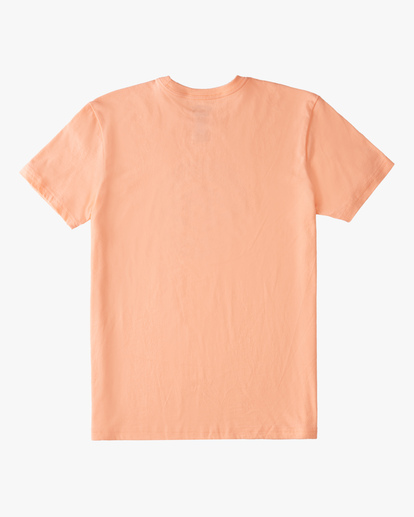 1 Boys' (2-7) Diamond Wave Short Sleeve T-Shirt Black ABTZT00151 Billabong