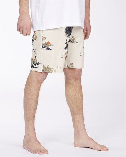 4 Surftrek Lo Tide Boardshort Brown ABYBS00146 Billabong
