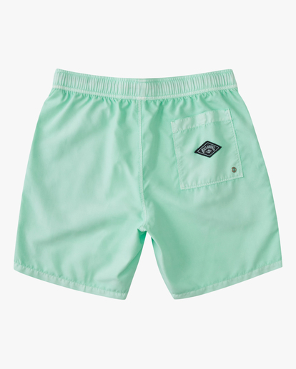 """1 All Day Overdyed Essential Boardshorts 17"""" Green ABYBS00226 Billabong"""