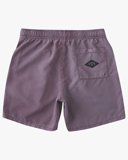 """1 All Day Overdyed Essential Boardshorts 17"""" Purple ABYBS00226 Billabong"""