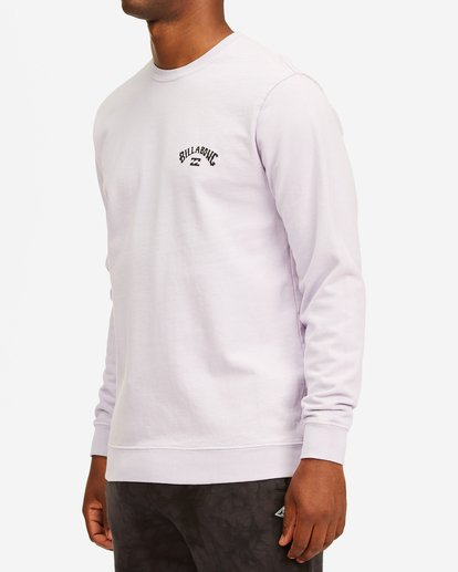 1 Arch Wave Washed Crew Neck Sweatshirt Purple ABYFT00199 Billabong