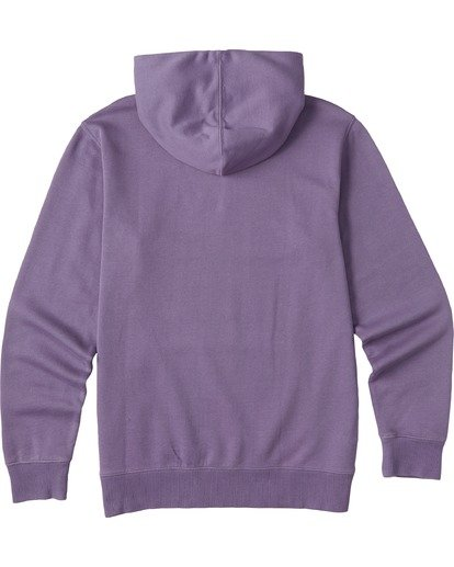 4 Wave Washed Pullover Hoodie Purple ABYKT00113 Billabong
